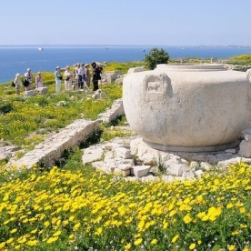 amathus-archaeological-site-180261